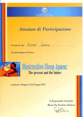arezzo1151